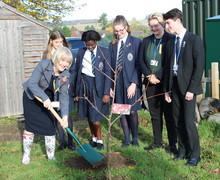 Claire Robins OBE tree planting Nov2018