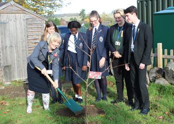Eco Garden Celebrate One Year